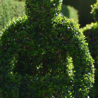 Qué ver en Losar de la Vera, el pueblo habitado por esculturas botánicas
