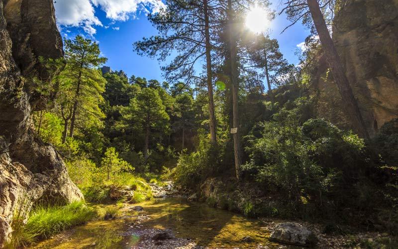 espacios-naturales-de-Teruel