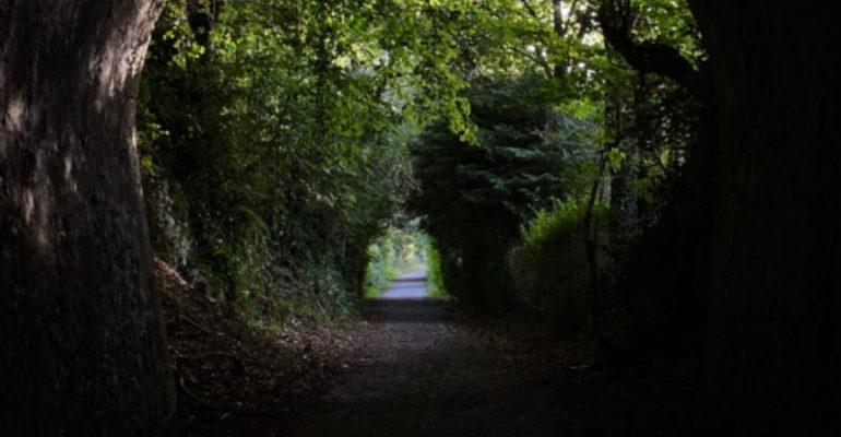 Vías verdes de Navarra, bellos senderos renacidos del ferrocarril