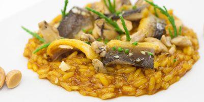 comer castellon plana restaurante aqua
