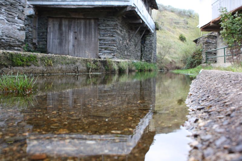 Río Camba a su paso por Campobecerros