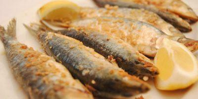 comer pescaito frito chipiona casa laura