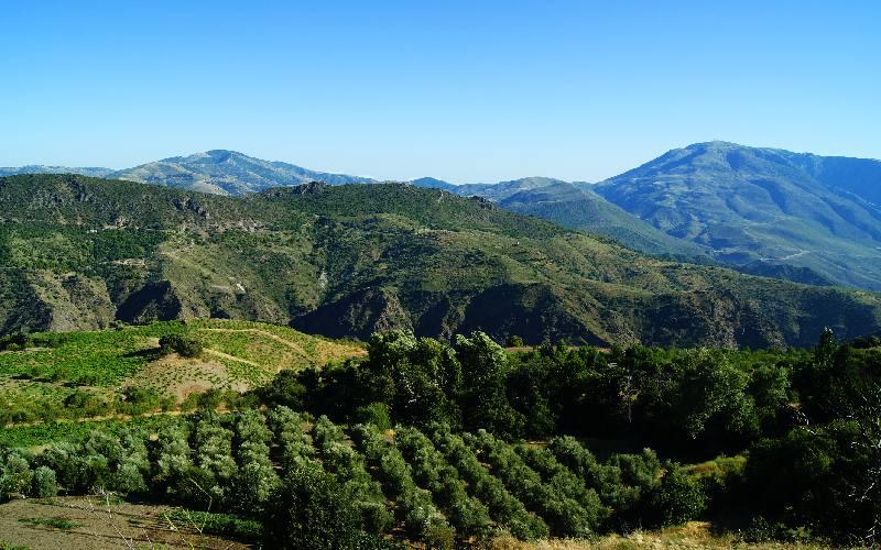 Sierra de Lújar