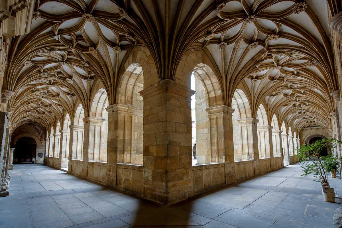 catedral de leon camino frances