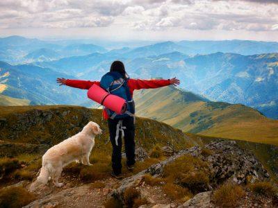 El Camino de Santiago con perros