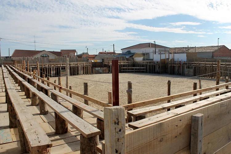 Plaza de toros de la Empalizada