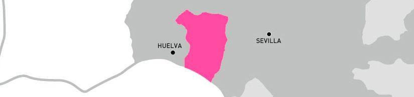 Vinos Condado de Huelva