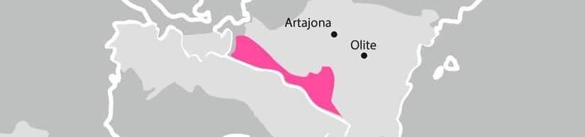 Vino Rioja en Navarra