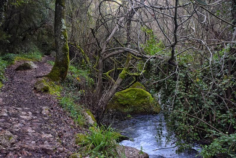 Ruta del río Majaceite