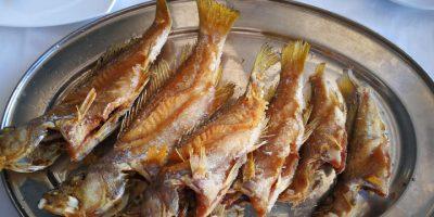 comer pescado corralejo restaurante gregorio pescador
