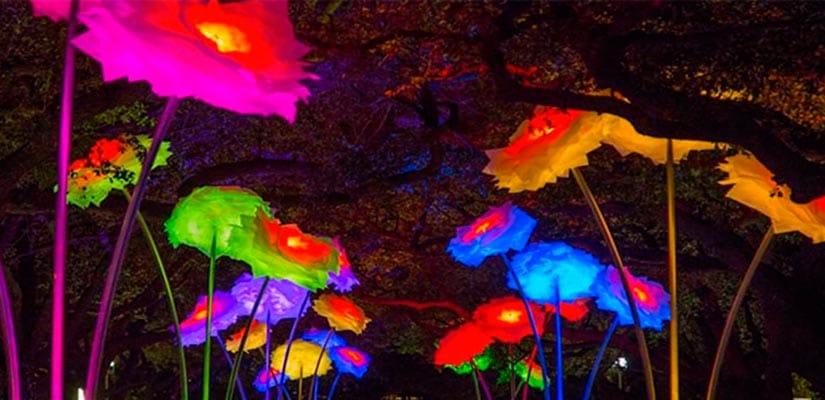 iluminacion flores madrid
