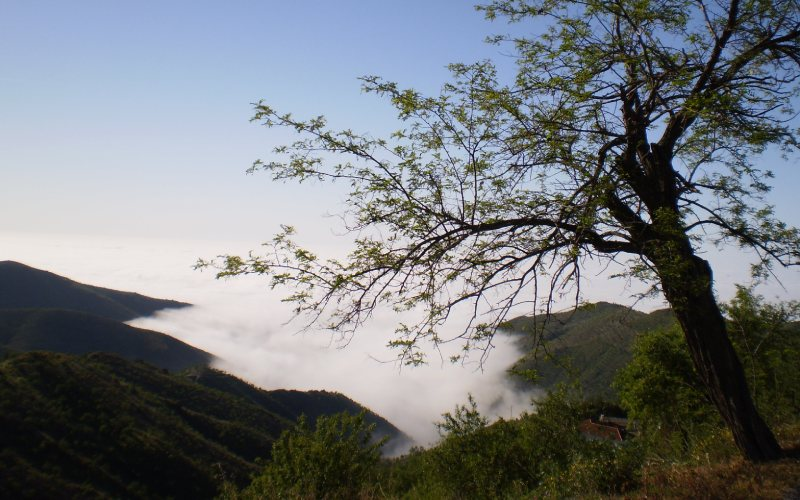La Sierra de la Contraviesa