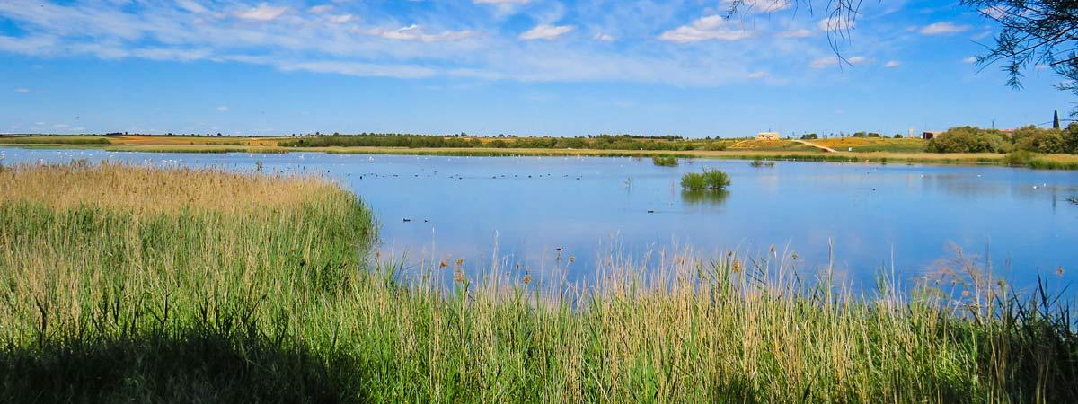 Lagunas de Campo de San Juan