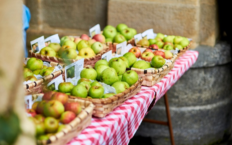 Manzanas en Donosti