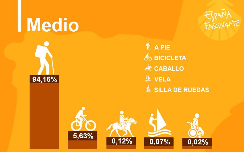 Estadísticas del Camino de Santiago, Medio