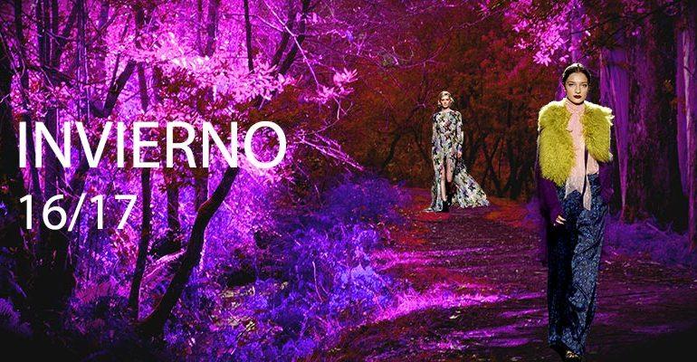 El morado, color fascinante de este invierno