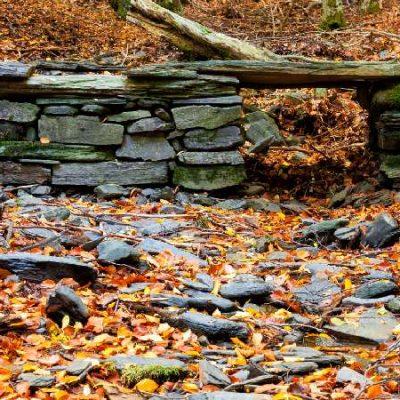 Disfruta del otoño en estos trece hayedos de España