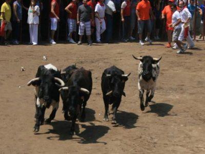 Coria / San Juan y el Toro de Coria