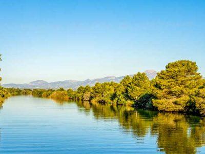 Parque Natural S'Albufera Alcudia – Mallorca