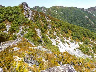 Parque Natural de Fuentes del Narcea, Degaña e Ibias