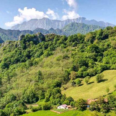 Parque Natural de Ponga