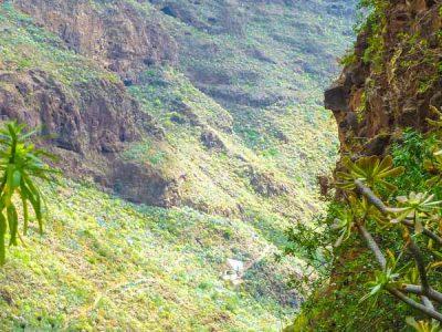 Parque Rural de Doramas – Gran Canaria