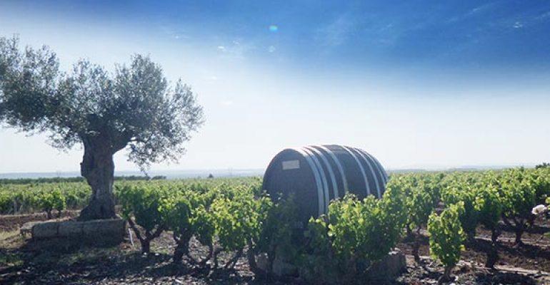 Feria del vino Entreviñas – Aldeanueva de Ebro