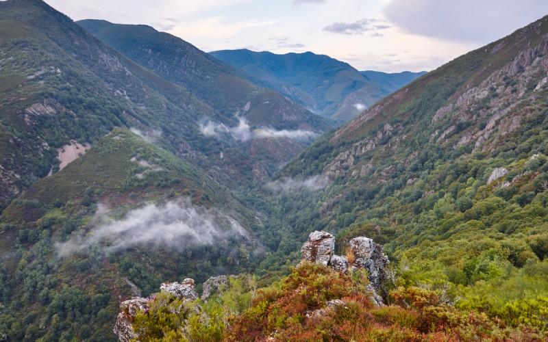 Reserva Natural Integral de Muniellos, Asturias