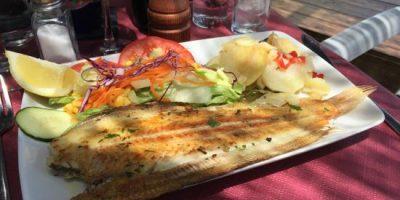 comer torrox costa restaurante varadero beach