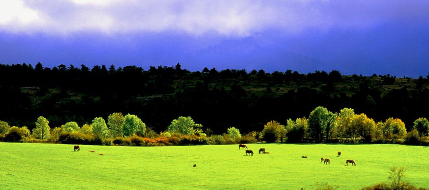 Τhe Natural Park of Valderejo