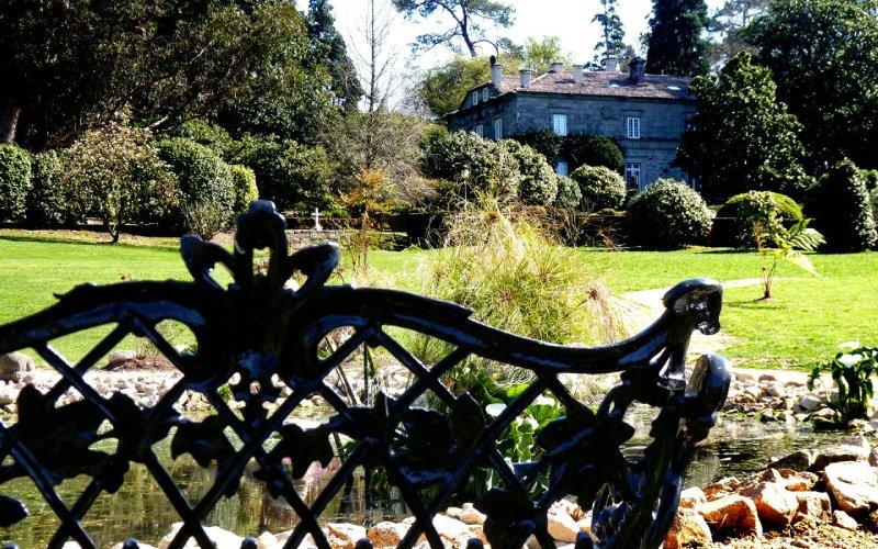 Camelias en el jardín del Pazo de Rubianes (Vilagarcía)