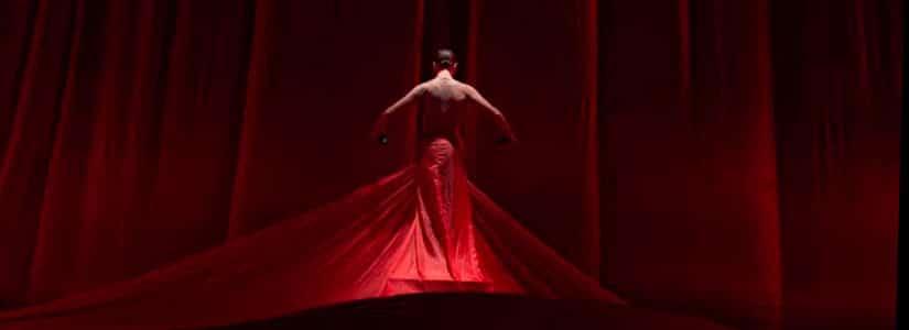 viaje al interior del flamenco