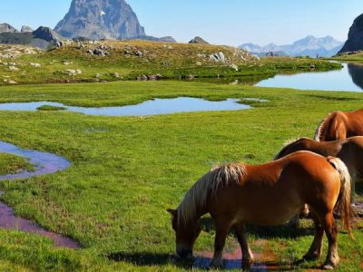 Valle de Tena, un alejado y encantador rincón natural en plenos Pirineos