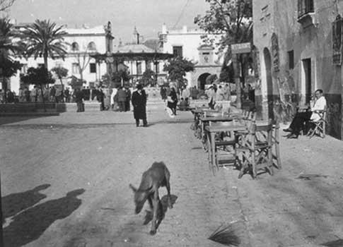 La Plaza de España de Écija en 1950