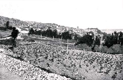 foto antigua fermoselle