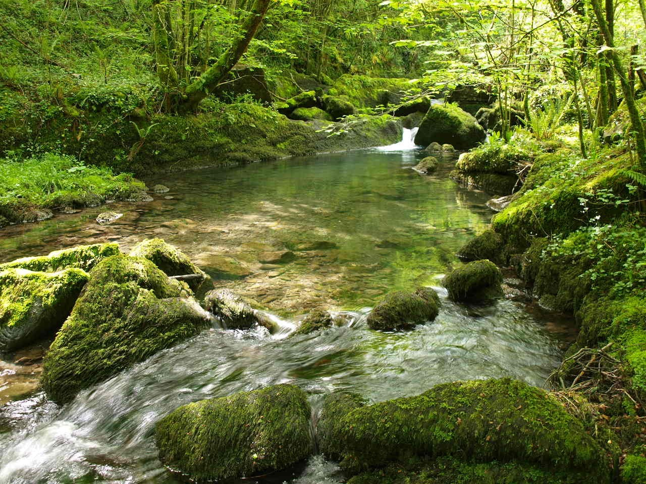 Circuito Olaberria : Parque natural de aralar españa fascinante