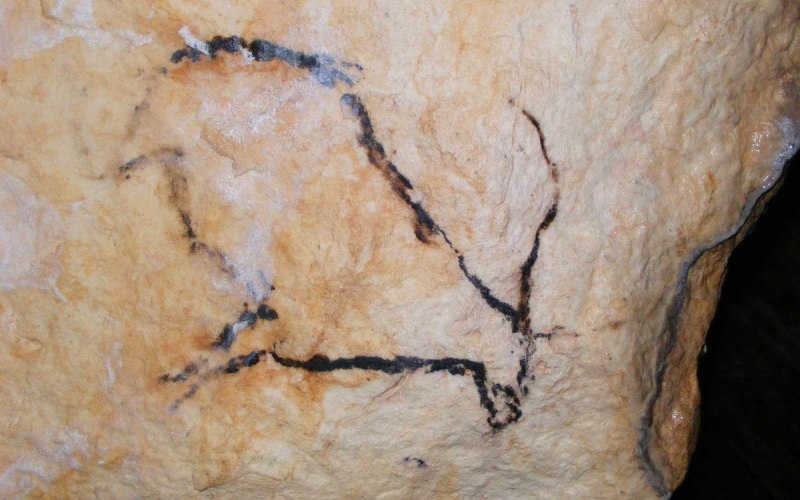 Cabra de la cueva de Nerja
