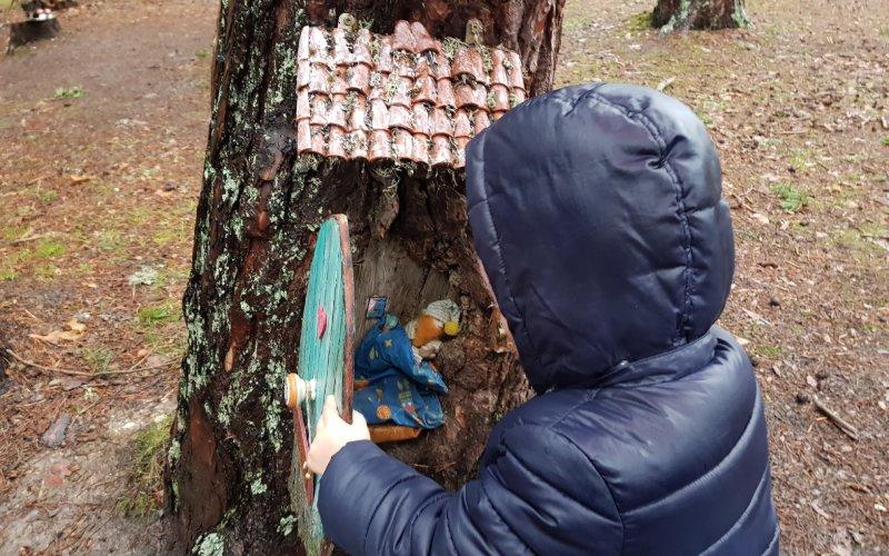 Uno de los muchos secretos de este bosque mágico