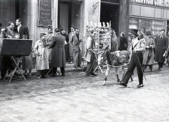 burro-por-la-calle_san_anton_foto-de-campua-españa-fascinante