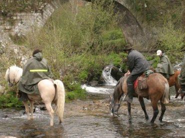 El Camino de Santiago a caballo