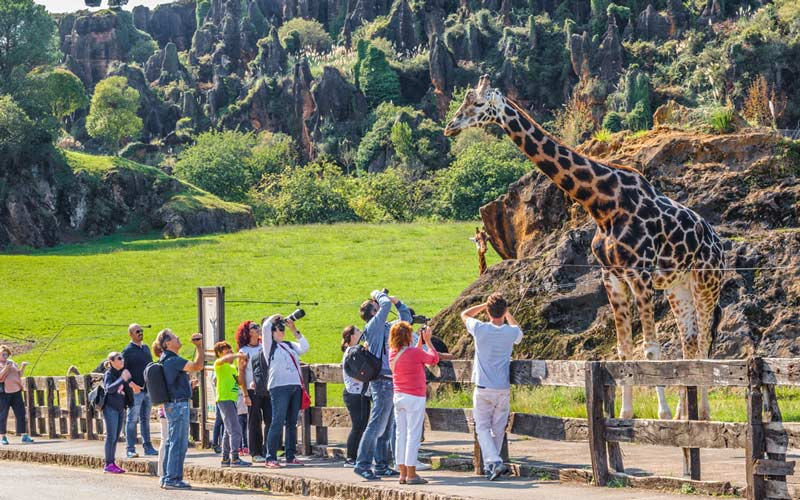 parques naturales animales semilibertad espana