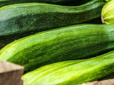 Beneficios y propiedades del calabacín