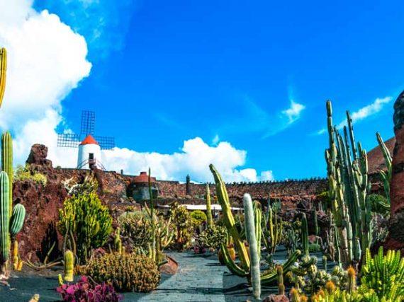 Jardín de Cactus de Guatiza