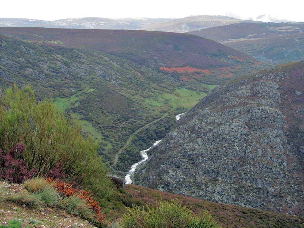 Cañçon del río Forcadura en Vigo, Galende