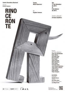 cartel rinoceronte teatro