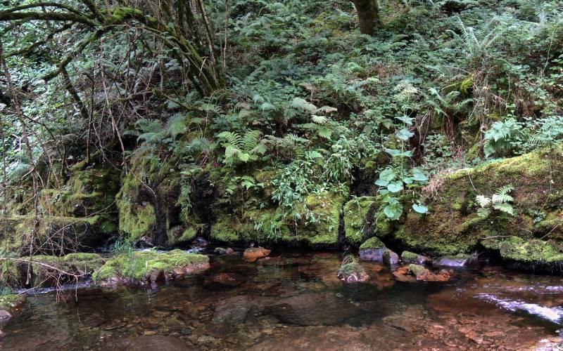 Tramo de la ruta hacia Cascadas del Cioyo