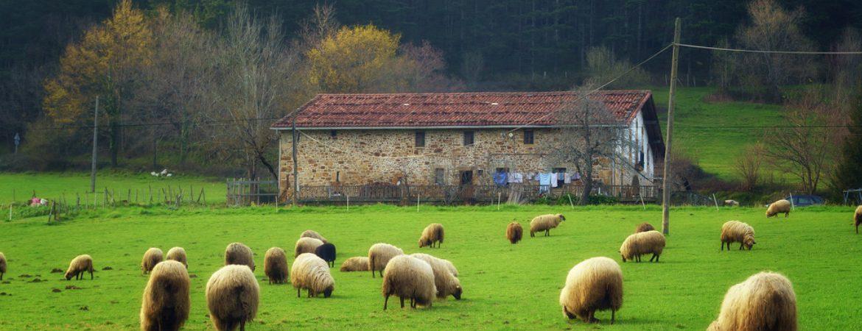 Los 7 caseríos más singulares de San Sebastián
