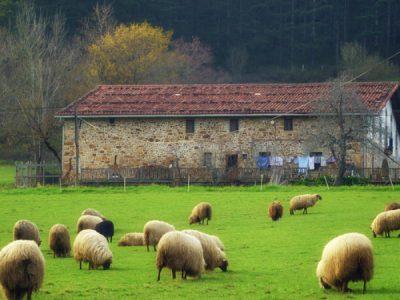 Los 7 caseríos más singulares de San Sebastián región