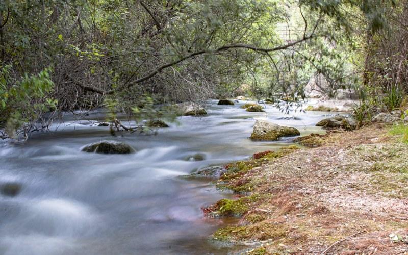 Otra perspectiva del río Castril