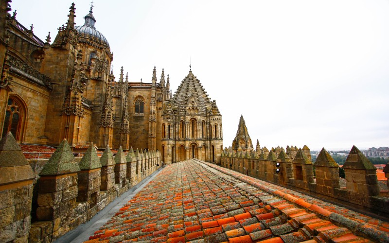 Parte superior de la Catedral Vieja, Salamanca